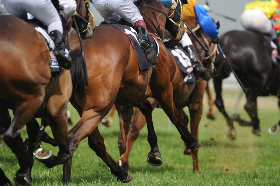 Im Rennsport kommt´s sehr wohl auf Größe und Gewicht des Jockeys an. @ Symbolbild Shutterstock / Sportlibrary