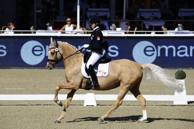 Nici Ahorner (W) zählt bei internationalen Pony-Bewerben immer zu den Favoriten! © Manfred Leitgeb