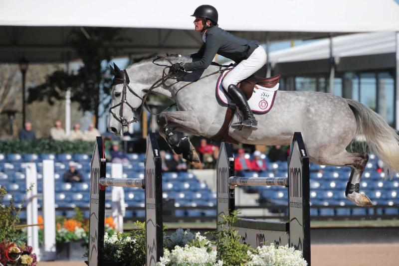 Alpha VDL and Darragh Kenny (IRL) have had success in the grand prix ring. © Sportfot