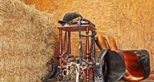 """Jede Menge """"Ramsch"""" besitzen, ist für Reiterfreunde völlig normal. So macht das Teilen gleich noch mehr Freude. © shutterstock"""