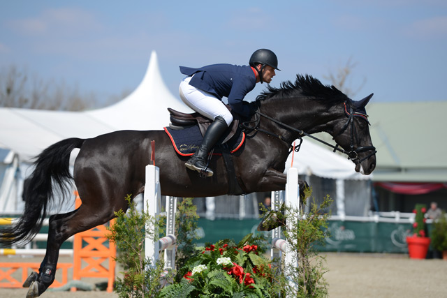 Danie Welte (GER) triumphierte mit Let´s Be Great im VIP Small Tour Final © Nicole Ciscato
