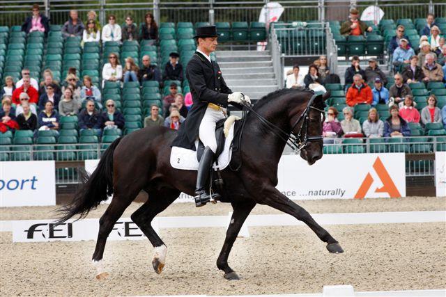Peter und 'Kurti' ritten bei den Europameisterschaften in Windsor auf den 20. Rang. © Manfred Leitgeb
