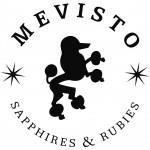 logo_mevisto