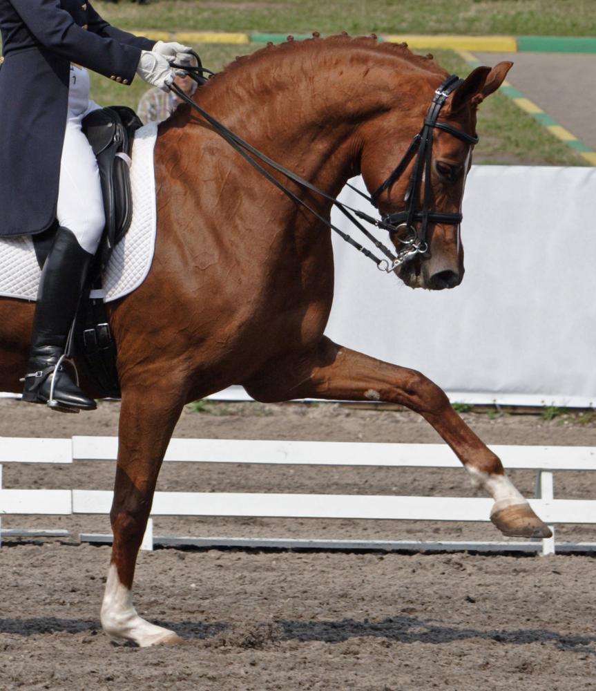 Auch die Angst vor dem Erfolg spielt bei vielen Athleten eine große Rolle © Shutterstock/Horsemen