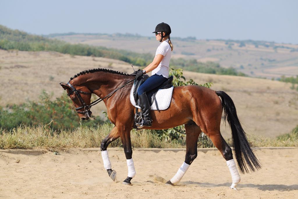 """""""Nimm dein Pferd nicht so eng"""", ist eine negativ formulierte Anweisung und lerntechnisch dysfunktional © shutterstock / Pirita 1"""
