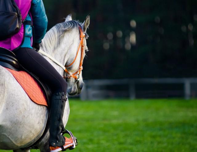 Welche Qualifikationen ein Distanz-Trainer erfüllen muss erfahrt ihr bei uns © Shutterstock