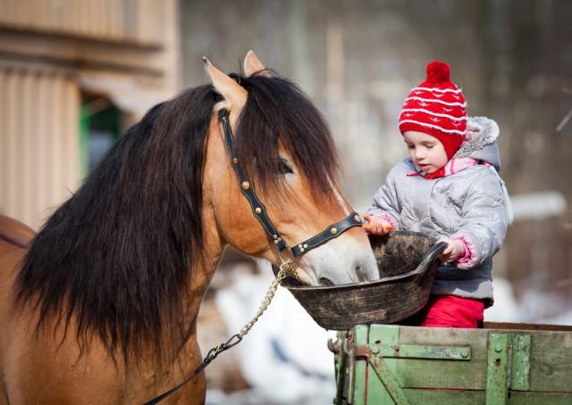 Therapeutisches Reiten hilft auch Menschen mit Entwicklungsschwächen! © shutterstock / Alexia Khruscheva