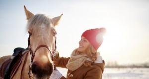 Steige ruhig mal ab und befasse dich vom Boden aus mit deinem Pferd, um wieder mehr Vertrauen zu fassen. © shutterstock / Pressmaster