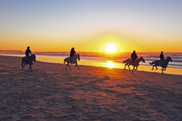 Auch der Urlaub mit Pferd zählt zu Urlaub - zumindest bei uns Reitern. ® shutterstock / Steve Photography
