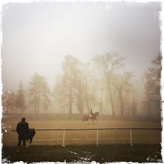 Training am Außenplatz bei Nebel in Stadl Paura. © Michael Rzepa