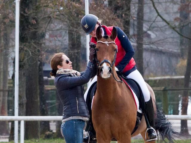 Konzentrierte Vorbereitung für von Chiara Pengg mit Auheims Maximus und der Hilfe von Stephanie Dearing für das Pony CDI bei Austria's CDI at Easter. Am Ende waren es satte 66,838%. © Michael Rzepa
