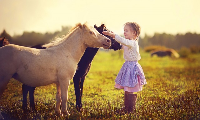 Spass haben! An der Zeit mit den Pferden und beim reiten! Das ist wichtig! © Shuterstock Tatiana Bobkova