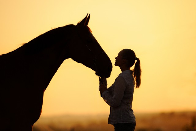Pferde sind sehr sensibel für schlechte Gedanken ihrer Reiter - Versprochen! © Symbolbild Shutterstock / Pirita