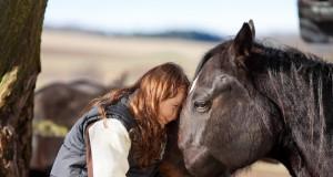 Denk immer über deine Arbeit mit den Pferden nach und mach dir Notizen. © shutterstock / Racorn