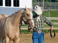 Wenn du deiWorauf es bei der Ausbildung im Westernreiten ankommt erfahrt ihr bei uns. © Shutterstock/Cathleen A Clappene Wettkampfpausen am liebsten mit deinem Pferd verbringst ist das genauso gut wie in Gesellschaft anderer Kollegen. © Shutterstock/Cathleen A Clappe