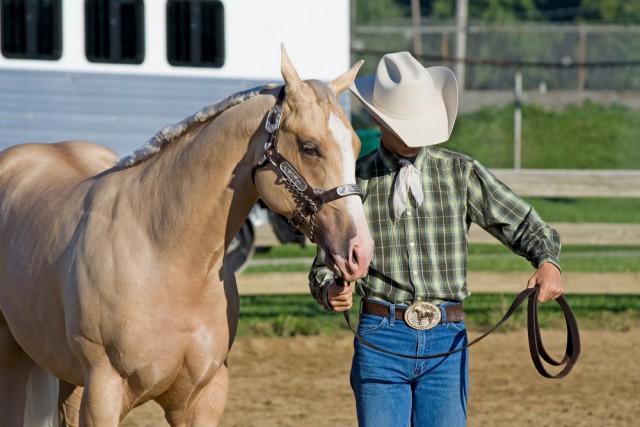 Routinierte Handgriffe sind nicht immer verkehrt. © Shutterstock/Cathleen A Clappe