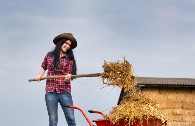 Stallarbeit hält fit. @ Symbolbild Shutterstock / Jevtic Budimir