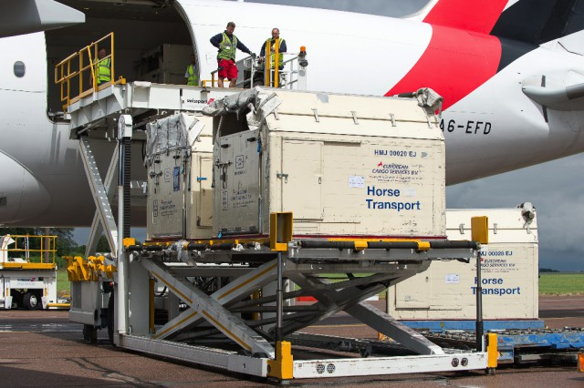 Horses bound for the Rio 2016 Olympic Games are loaded on to an Emirates SkyCargo Boeing 777-F at London Stansted Airport. On the flight were 34 horses from 10 of the nations competing in Equestrian at Rio 2016 - 29 July 2016 -Pic Jon Stroud