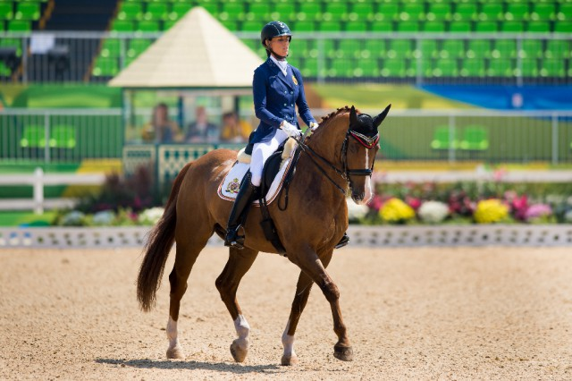 Michele George (BEL) und FBW Rainman im Team Test Grad IV. © FEI Photos