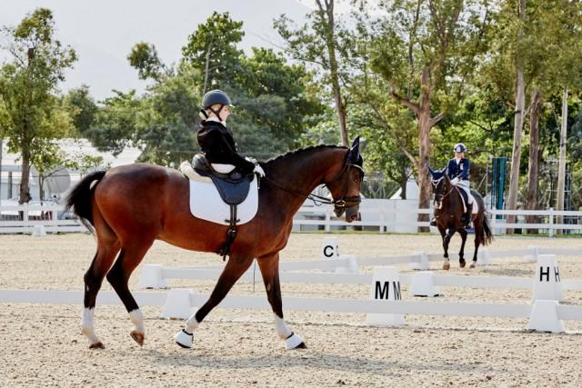 Stinna trainiert mit viel Ehrgeiz.  © Liz Gregg / FEI photos