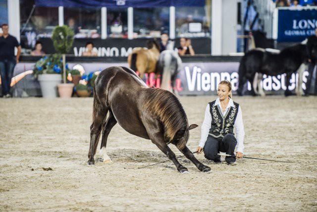 Kerstin Brein und ihre Ponys zeigten eine mega coole Freiheitsdressur. © Valerie Oberreiter
