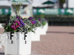 The FEI's new Degree of Difficulty (Dod) Freestyle Judging System is making its AGDF debut at the 2017 Adequan® Global Dressage Festival. © Susan J Stickle.com