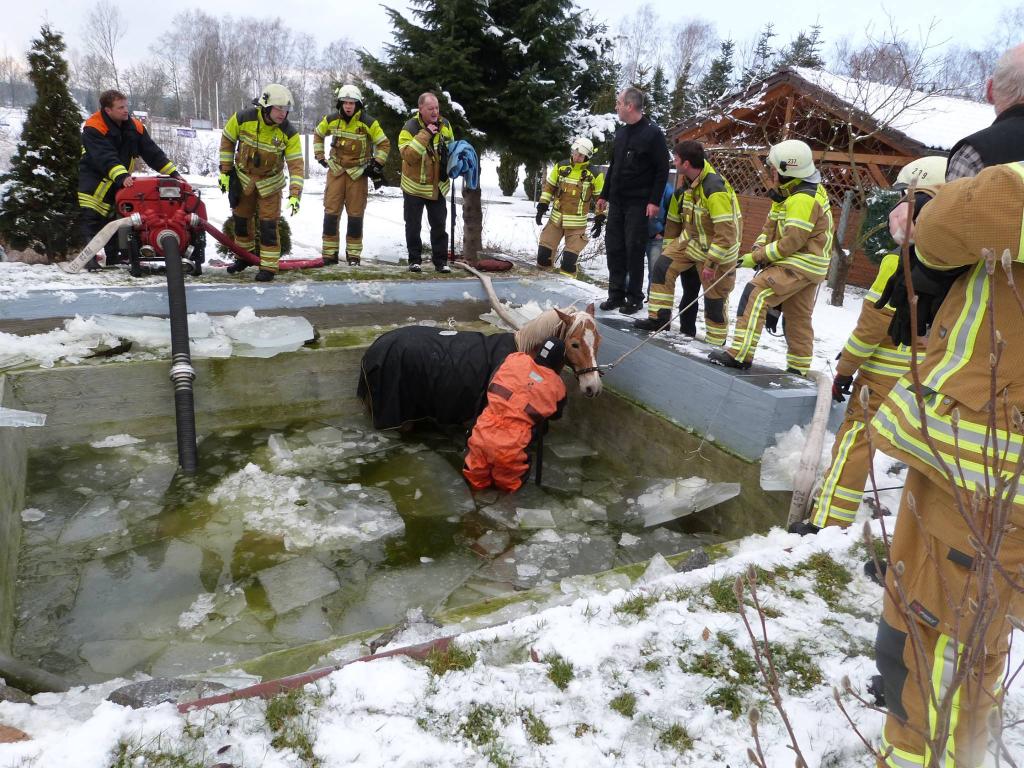 Landkreis Kronach: Feuerwehr rettet Pferd vor Kältetod