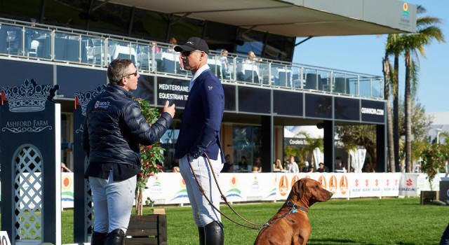 Was wird hier wohl diskutiert? Den Hund scheint es wenig zu interessieren! © 1clicphoto.com I Herve Bonnaud