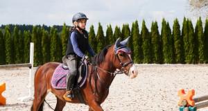 Die Persönlichkeit des Sportlers ist auch auf dem Pferd entscheidend! © scigelova / Shutterstock