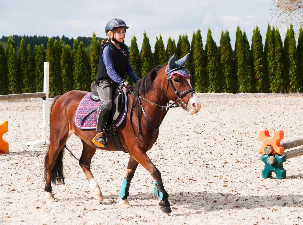 11 Dinge Die Du Wissen Musst Bevor Du Deinem Kind Ein Pony Kaufst