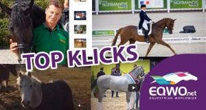 EQWOnet-Topklicks-Reitsportnews