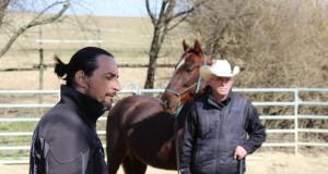 Joedy und Stefan mit dem American Saddlebred Wallach Red von Stefanie Sommersguter-Mayerhofer. © Birgit Reiß