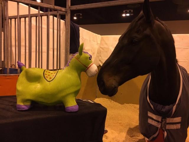 Endlich wieder verein! Cornet und sein grüner Freund Happy Lucky. © Alex Stork