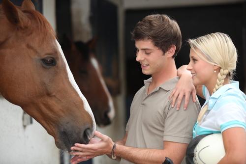 Auch im jungen Erwachsenenalter geben Pferde viel Kraft. © Phovoir / Shutterstock