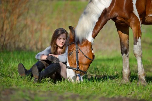 Lass dir Zeit und gib auch deinem Pferd Zeit zu lernen.  © Shutterstock / Sheikoevgeniya