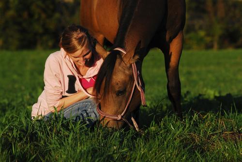 Pferde verstehen und unsere Gedanken ordnen - darum gehts im Pferdesport!  © Shutterstock / Alexandra Giese