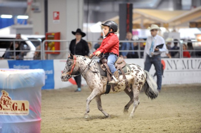 Ponies ridden in western style saddle: a competition reserved to the younger riders! © Salone del Cavallo Americano