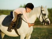Wenn dein Kind ein Pony bekommt, dann bekommt es einen besten Freund, auf den es sich immer verlassen kann. © Shutterstock/Puhach Andrei