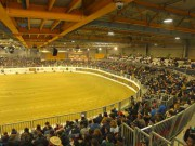 "The well tested oval arena ""Oklahoma style"" is unique in Europe. © Salone del Cavallo Americano"
