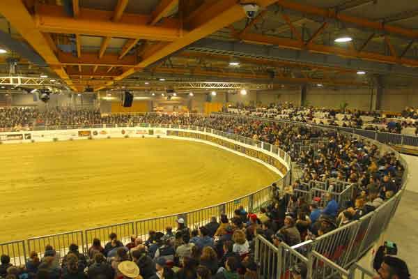 "The well tested oval arena ""Oklahoma style"" is unique in Europe. © Salone del Cavallo Americano"