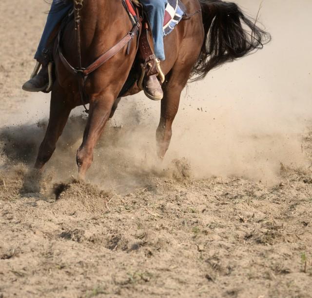 Ist es realistisch die Saison so beginnen zu wollen, wie die letzte geändert hat? Gib dir und deinem Pferd Zeit! © Shutterstock | cvesilvio