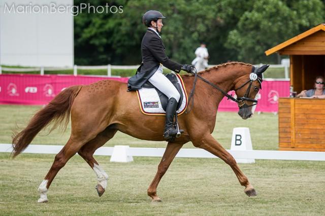 Janet Wiesner und FST Golden Joy rangieren im CIC2* bei den Horse Trials in Wr. Neustadt nach er Dressur auf Platz zwei. © Marion Berg Photography