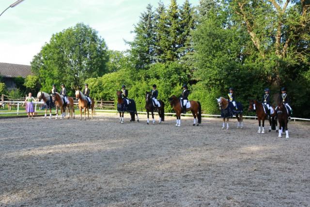 Die Titel der Ländlichen Landesmeister Dressur Haflinger und Pony wurden in St.Pölten - Wagram vergeben. © Selma Hönigschnabel