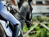 Nimm das Turnier und dein Ergebnis im Bewerb nicht immer so ernst - wichtiger ist, was du für dich lernen kannst © Shutterstock | Kiselev Andrey Valerevich