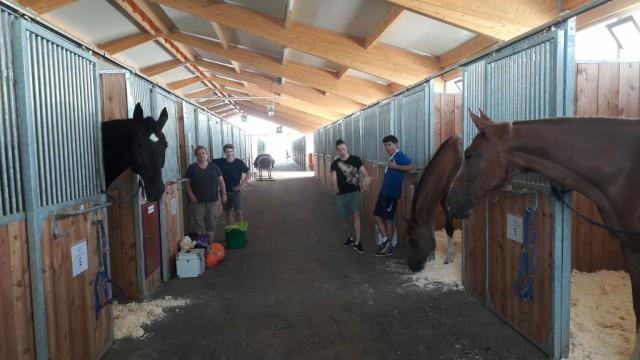 Team Austria ist im Pferdesport Magna Racino angekommen. © privat