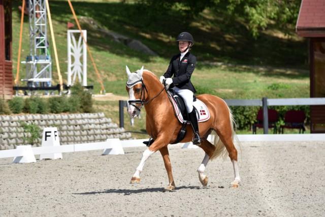 Bronze ging mit Sara Aagaard Hyrm und Der Harlekin B ebenfalls nach Dänemark. © Facebook FEI European Championships für Ponies 2017