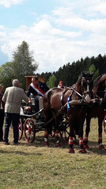 Endlich Oberösterreichischer Landesmeister: Thomas Blumschein und sein Gespann. © Privat