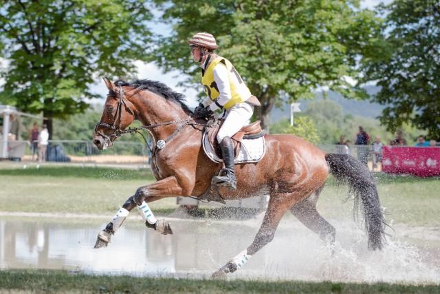 Felix Etzel (Deutschland) und Quidor 8 entschieden das CIC1* der Horse Trials Wr. Neustadt für sich. © Michael Graf