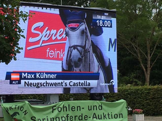 Mit Neugschwents Castella sicherte sich der Routinier super Platzierungen. © Max Kühner Sporthorses
