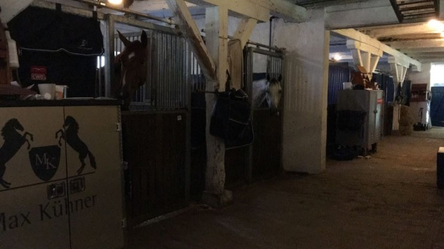 Die Bedingungen in Groß Viegeln waren top und die Pferde in fixen Boxen untergebracht. © Max Kühner Sporthorses
